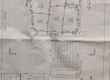 ارض للبيع في بيت لحم  /دار صلاح