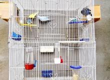 قفص كبير للبيع بالطيور والسعر نهائي