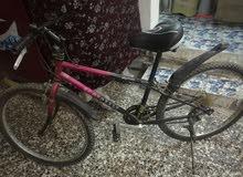 دراجة هوائية السعر 75