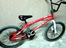 dk bike