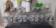 full set aqaurium for sale