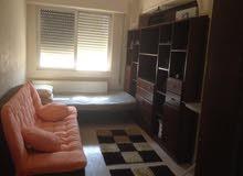 Best price 110 sqm apartment for rent in AmmanJubaiha