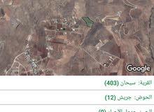 أرض مساحتها 28 دونم