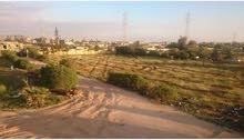 قطعة ارض للبيع في منطقه القوارشه شارع الشجر