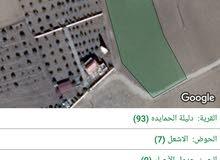 حوض الأشعل. لب بجانب قصر البحريني.على شارعين