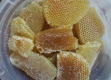 شمع العسل (قروف) بالجمله