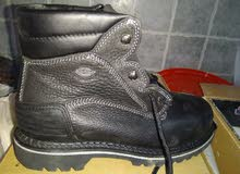 safety shoes (dickies)