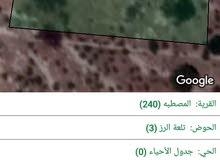 قطعة أرض مساحة  3400 م المصطبه / تلعة الرز /  طريق  جرش