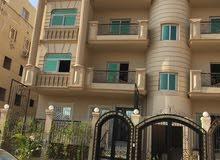 شقة 242م بمقدم 20% بارقي مواقع الشيخ زايد
