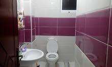 First Floor  apartment for rent with 1 rooms - Zarqa city Al Zarqa Al Jadeedeh