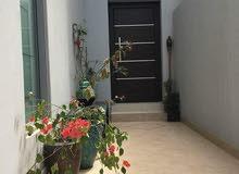 فيلا مفروشة للإيجار في عراد * Villa for rent in Arad