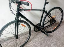 GIANT.  Escape Sports Cycle