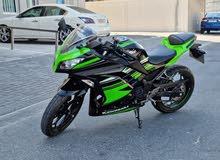 Kawasaki Ninja 300  /  2017 (Green)