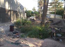 ارض زراعي 176 متر مقابل شارع ابو طياره زراعي