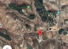 ارض مساحة 500 متر على شارعين خلف مدارس الشويفات مطلة وعاليه