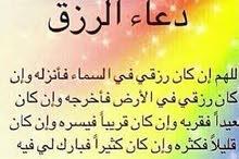 محاسب مالي خبره احترافيه