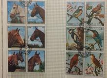 طوابع بريدية قيمة ومجلدة بطريقة احترافية