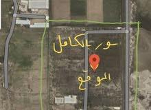 للبيع مزرعة على طريق بو حدرية مساحة 50 الف متر مربع
