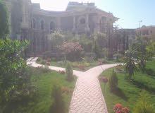 فلتين توينز - بواجهة قصور زمان - وحمام سباحه - 1100 حدائق