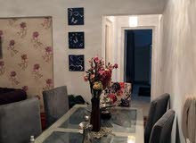 for rent in Cairo Rehab City apartment
