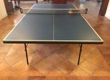 Inside Table Tennis in excellent condition