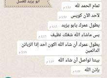 عسل سدر فاخر للمتزوجين بغذا ملكات النحل ومنتجاته الفاخره