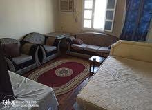 شقة غرفتين وصالة ومطبخ وحمام اريد واحد للمشاركة بالغرفة الثانية