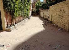 شقة سكنية بالعجمى ابو يوسف شارع عبير الزهور