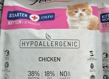 اكل قطط الطبي فيليسيا للقطط الصغيرة وحديثه الولادة