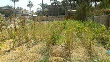 ارض للبيع 200م في منطقة شاطئ التاجي