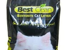 للبيع رمال قطط