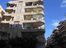 شقة 100م ناصية - بالتقسيط مسجلة في شاطئ النخيل بالاسكندرية
