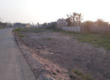 يعلن مكتب عقارات الشروق عن قطع أراضي  في البصرة شط العرب (الجزيرة- الكباسي)