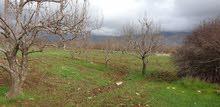 للبيع أرض في سهل مضايا