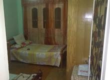 apartment for rent Second Floor in Cairo - Nasr City