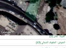 ارض تجاري مكاتب في وادي صقرة للبيع شارع عرار
