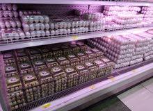 مطلوب وكيل في الجنوب لتوزيع بيض السمان