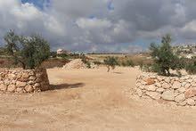 قطعة ارض للبيع مواصفات عالية جدا .المفرق-حدود جرش-قرية نادرة-حوض الطوشة-بسعر مميز جدا.