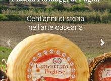 أجبان إيطالية الصنع دات جودة عالية