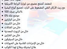 زيت الاركان المغربي