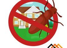 مكافحة الآفات في موسم تكاثر الحشرات