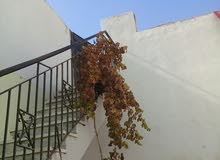 منزل في رأس حسن