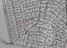 أرض للبيع في ماركة الجنوبية - حوض المرقب - منطقة الربوة - حوض 8 - قطعة 382 - وات