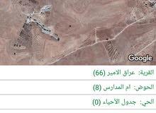 ارض للبيع في عراق الامير بسعر مغري