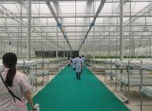 مهندس إستشاري زراعة مائية يطلب عمل