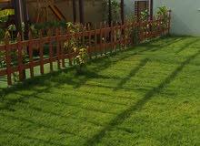 جماليات حديقة منزلك ،لها بصمة نفسية ،خليها علينا