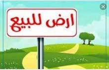 للبيع الارضي زراعيه شط العرب الجزيره