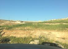 للبيع قطعة ارض شفا بدران زينات الربوع حوض المكمان