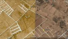 قطعتين ارض مساحتهما 1000 متر بمنطقة ام مبروكة