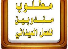مطلوب مندوبين في الرياض في مجال الدعايه والاعلان للعمل الميداني يشترط امتلاك سياره